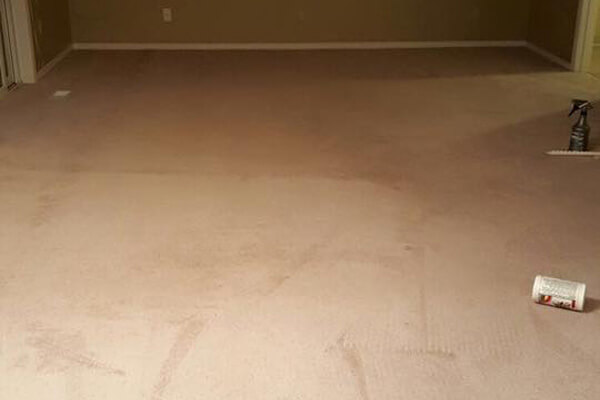 Carpet Steam Cleaning Vancouver WA