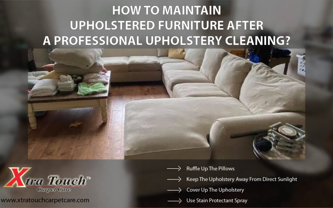 How To Maintain Upholstered Furniture After A Professional Upholstery Cleaning?