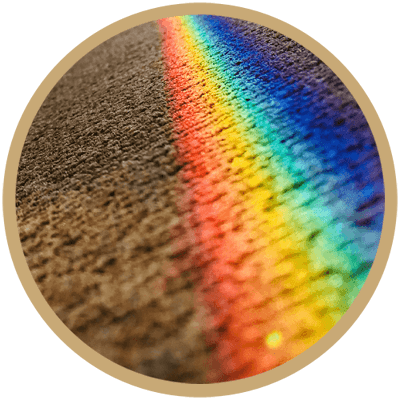 Carpet Color Repair and Correction Vancouver WA