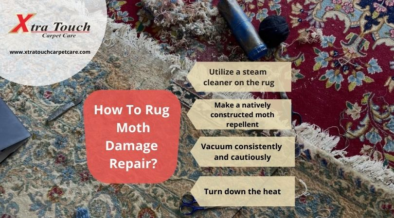 How To Rug Moth Damage Repair?