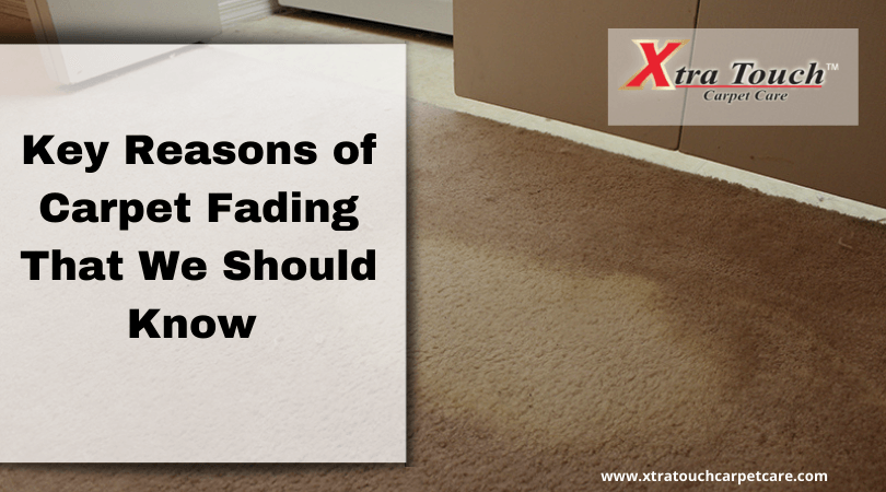 Key Reasons of Carpet Fading That We Should Know
