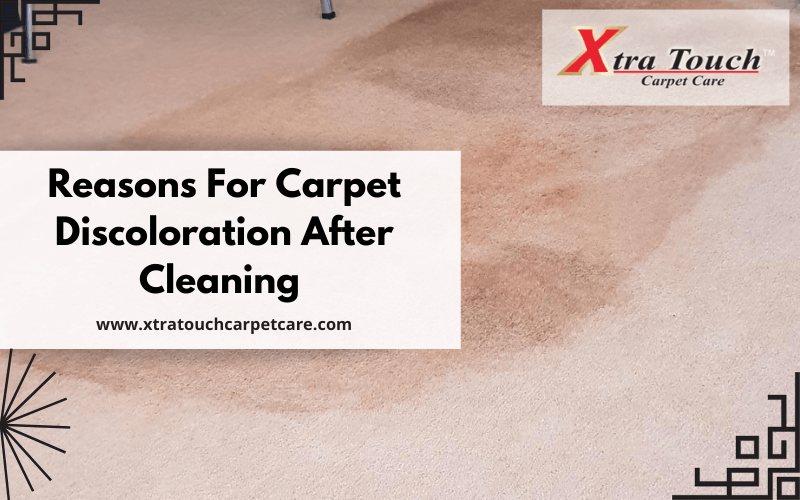 Reasons For Carpet Discoloration After Cleaning