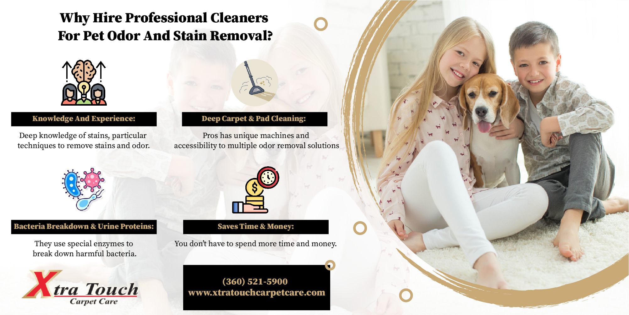 Why Hire Professional Cleaners For Pet Odor And Stain Removal? [Infographic]